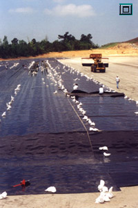Deployment and seaming of 60-mil HDPE Geomembrane at a landfill site in the southeastern United States.